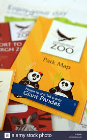Pandas Map Edinburgh Zoo Park Map And Other Literature Highlighting The Giant