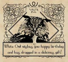 Happy Birthday Owl Meme - white owl wishes you happy birthday and has dragged in a delicious