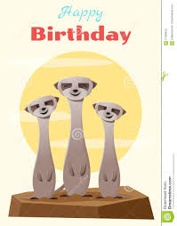 birthday and invitation card animal background with meerkat stock