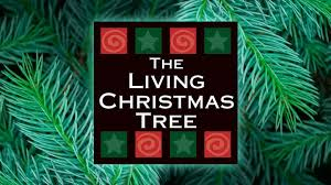 the living christmas tree washington d c tickets 8 at