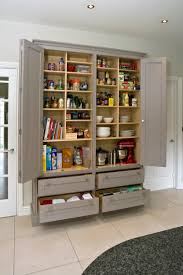 kitchen cabinets pantry ideas pantry kitchen pinterest larder storage pantry and bespoke