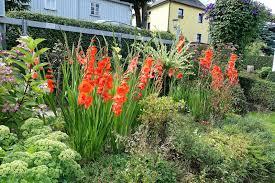 Blumen Bade Ferienwohnung Im Erzgebirge Haus Feig In Geyer