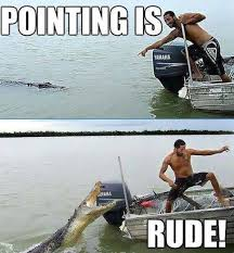 Rude Friday Memes - animal memes pointing is rude funny memes