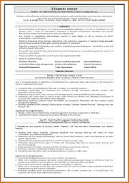 best resume summary how to write resume summary for freshers best resume format for freshers accountant dravit si