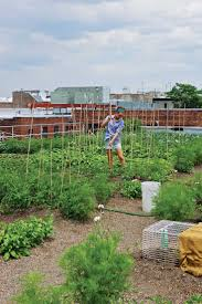 Urban Gardening Images 78 Best Urban Farming U0026 Agriculture Images On Pinterest Urban