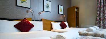 Comfort Inn Best Western Budget Hotels In London Victoria Bed And Breakfast Accommodation