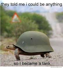Turtle Meme - tank turtle meme hilarious stuff pinterest turtle meme turtle