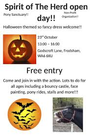 pony sanctuary spirit of the herd open day frodsham town council