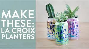 Succulent Planter Diy by Diy La Croix Can Succulent Planters Youtube