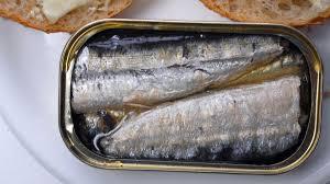 dur fisk fra dåse samvirke
