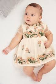 buy ecru floral embroidered dress 0mths 2yrs from the next uk