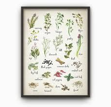 kr uter k che beautiful poster für küche pictures home design ideas