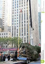 rockefeller center christmas tree donation best images