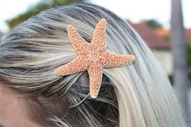 starfish hair clip starfish hair clip on the hunt