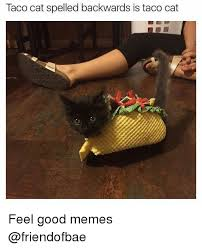 Feels Good Meme - taco cat spelled backwards is taco cat feel good memes meme on me me