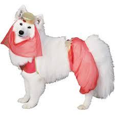 Genie Halloween Costume Amazon Harem Dog Pet Costume Large Pet Costumes Cool