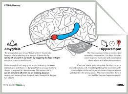 explanation of two important brain regions in ptsd the amygdala
