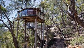 Eight amazing tree houses youll want to live in  Stuffconz