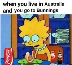 Haha Simpsons Meme - rock bottom the simpsons shitposting meme overlords of oz