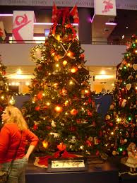 more chicago christmas trees u2013 the babuk report