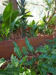 Metal Flower Bed Edging Garden Edging U2013 How To Do It Like A Pro