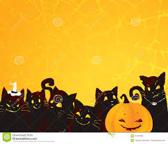 halloween background with black cats and pumpkin royalty free