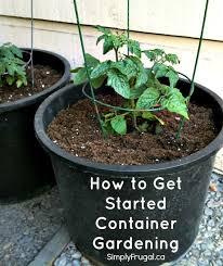 Indoor Vegetable Container Gardening - 403 best container gardening images on pinterest gardening tips