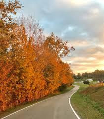 kentucky u0027s fall colors shine brightly nanahood