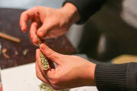 How To Grind Coffee Without A Coffee Grinder How To Grind Weed Without A Grinder