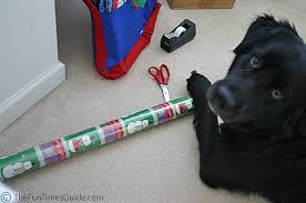 wrapping gifts with pets how to wrap presents with a or cat