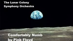 Led Zeppelin Comfortably Numb Symphonic Comfortably Numb By Pink Floyd Dailymotion