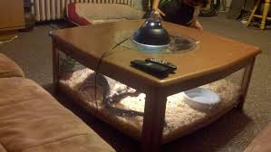 Fish Tank Living Room Table - coffee tables exquisite end table aquarium fishtank coffee