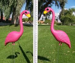 pink flamingo lawn ornaments buy 50 pink flamingo the pink flamingo blog