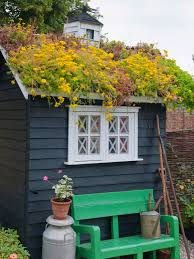shed idea roof garden and roof garden shed idea features dark wooden garden