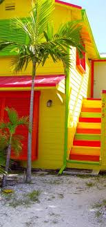 tropical colors for home interior 61 best colour happiness images on colors color trends