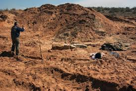 giant mammoth skull discovered bulldozer operator