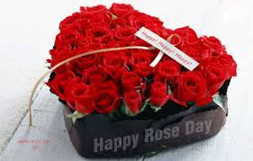 s day roses happy day flowers for you