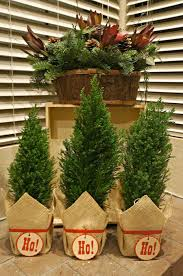 home decoration with plants simple holiday home decorating the fire place mantle for