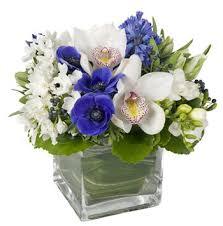 white and blue floral arrangements hanukkah flowers for next week big apple florist