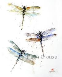 water droplet dragonfly dragonflies pinterest water droplets