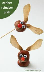 32 best conker crafts and activities for kids zabawy z