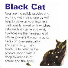 best 25 spirit guides ideas on spirit animal