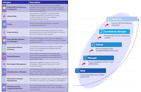 ibm governance maturity model categories and progress measures