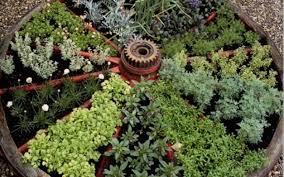 Small Herb Garden Ideas Small Space Herb Garden Ideas