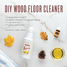 Wood Floor Cleaner Diy 22 Frugal Diy Floor Cleaners That Will Make Your Home Sparkle