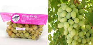 lychee fruit candy grapes that taste like cotton candy