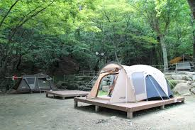 camping jeep camping spot for summer vacation in south korea donghwa campsite