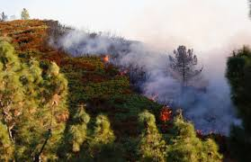 Wildfire Sports Car Value by Santa Cruz Mountains Loma Fire Burns 1 000 Acres Forces Evacuations