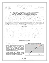 Job Developer Resume Sample by Business Development Resume Example Essaymafia Com
