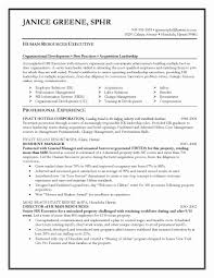exles of hr resumes hr director resume sle templates w myenvoc